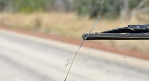 CARGLASS SALAPARUTA con OFFICINA MOBILE Un colpo accidentale di un sasso durante la guida, sbalzi termici o difetti di fabbrica, molti sono i fattori del tutto imprevedibili che possono causare la rottura del parabrezza. La sostituzione del parabrezza, rispetto alla riparazione, è senz'altro più costosa. Ma prima di valutare i costi, controlla la tua polizza assicurativa: se avrai  la polizza Cristalli, l'assicurazione coprirà parte del costo o, a seconda delle condizioni contrattuali, anche l'intero costo. Per la sostituzione del parabrezza con Carglass Salaparuta non sottovalutare due fattori: -Un parabrezza di qualità: montiamo solo cristalli originali e  certificati -Potrai contare su un lavoro eseguito a regola d'arte e da professionisti del settore Questi due fattori sono determinanti in quanto evitano, una volta sostituito il parabrezza, che il guidatore possa avvertire disturbi alla guida e/o alla vista a causa di un vetro difettoso o non originale. Non meno importante, un lavoro effettuato da esperti garantisce il buone sito dello stesso. Inoltre, essendo dotati di un'attrezzatissima officina mobile potrai ricevere l'intervento di sostituzione del parabrezza Salaparuta a domicilio, quindi comodamente a casa tua e senza alcun costo aggiuntivo. Per qualsiasi informazione o curiosità contattaci e visita il nostro sito: http://www.turone.it/servizi/carglass/sostituzione-parabrezza/